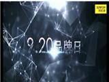 风来啦!华泽三峰品牌日暨集团战略发布会将于9月20日在沈隆重举行 (924播放)